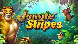 Read Jungle Stripes review